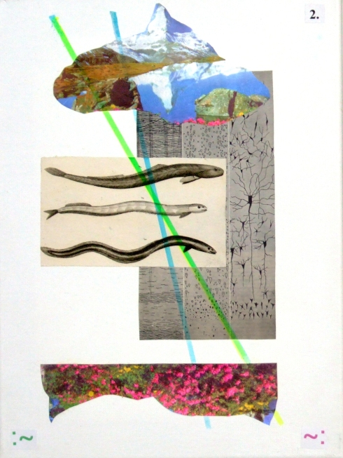 LANDSCAPES WITH SIX EELS (n.2) paper on canvas, cm.40x30x1
