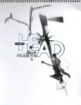 Nicola Di Caprio, Head frantic, collage e tecnica mista su carta, 30x40 cm., 2010