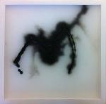 F. Schgor, Il ragno, cera, 25x25 cm-2