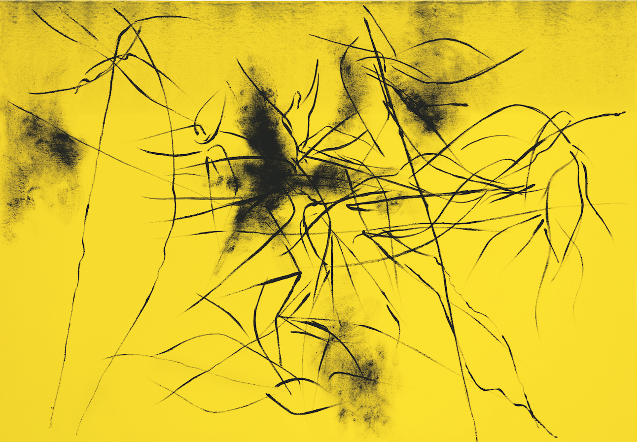 unaltra-natura-acrilico-su-tela-112x162-2013